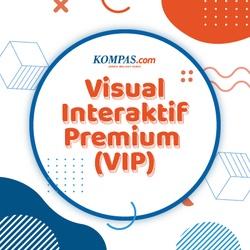 Visual Interaktif Premium (VIP)