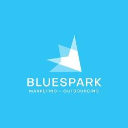 Blue Spark profile